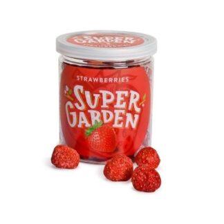 Külmkuivatatud maasikad 19g
