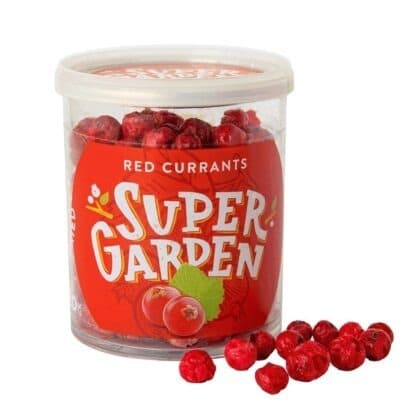 Külmkuivatatud punased sõstrad marjadega