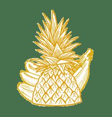 Külmkuivatatud puuviljad