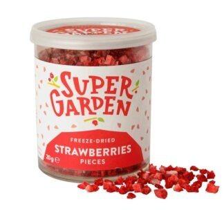 Külmkuivatatud maasika tükid 20g