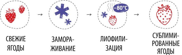 Процесс сублимационной сушки